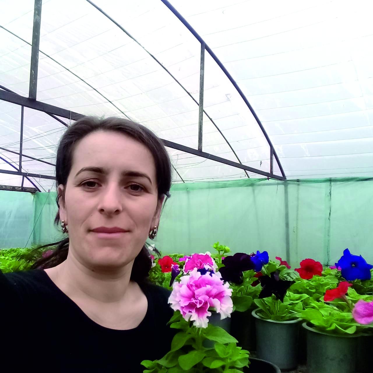У меня своя теплица цветы